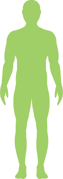 green_body